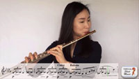 Video Flute Lessons